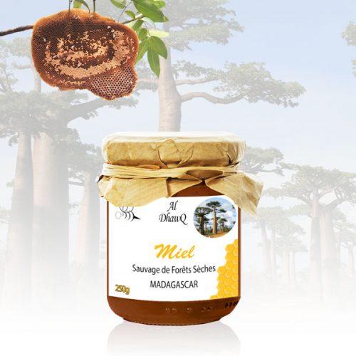 miel forêts sèches